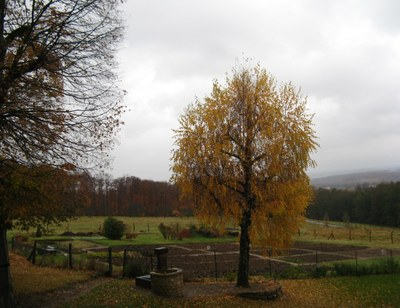 CSSRA_Marienbronn_campagne_jardin.JPG